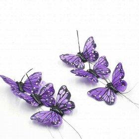 Papillon violet sur tige