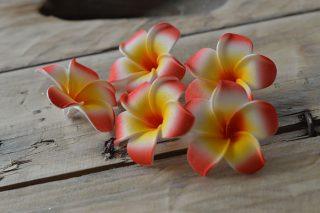frangipannier artificiel décoration fleur