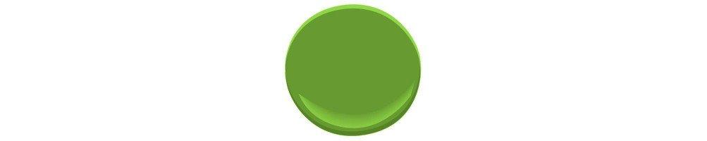 Décoration mariage vert